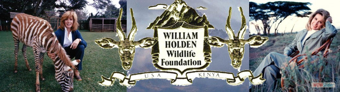 WILLIAM HOLDEN WILDFOUNDATION