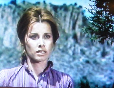 Shootout in a One-Dog Town Stefanie Powers